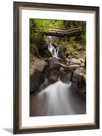 USA, Washington State, Beacon Rock State Park. Hardy Creek.-Brent Bergherm-Framed Photographic Print