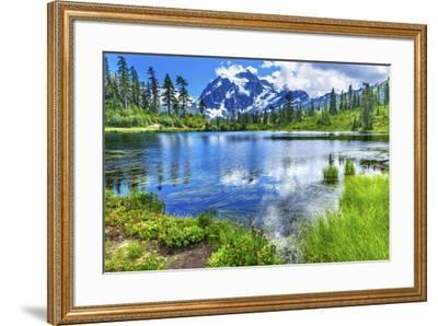 Picture Lake Evergreens Mount Shuksan Mount Baker Highway Snow Mountain Trees Washington Pacific No-William Perry-Framed Photographic Print