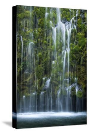 Mossbrae Weeping Waterfall, Mount Shasta California-Vincent James-Stretched Canvas Print