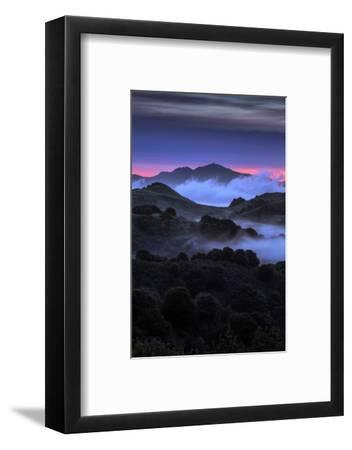 Wild Morning Fog at Sunrise East Bay Hills Mount Diablo Oakland-Vincent James-Framed Photographic Print