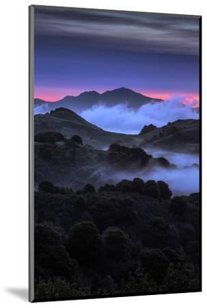 Wild Morning Fog at Sunrise East Bay Hills Mount Diablo Oakland-Vincent James-Mounted Photographic Print