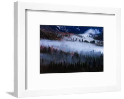 Magical Flow Mesmer Fog & Light Trees Sark Yosemite Winter Storm Valley-Vincent James-Framed Photographic Print