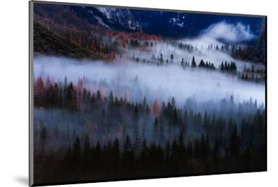 Magical Flow Mesmer Fog & Light Trees Sark Yosemite Winter Storm Valley-Vincent James-Mounted Photographic Print