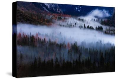 Magical Flow Mesmer Fog & Light Trees Sark Yosemite Winter Storm Valley-Vincent James-Stretched Canvas Print