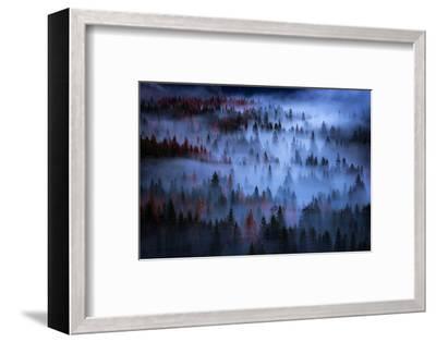 Ethereal Mesmer Fog & Light Trees Sark Yosemite Winter Storm Valley-Vincent James-Framed Photographic Print