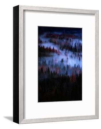 Mesmer Portrait Fog & Light Trees Sark Yosemite Winter Storm Valley-Vincent James-Framed Photographic Print