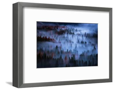 Heavenly Mesmer Fog & Light Trees Sark Yosemite Winter Storm Valley-Vincent James-Framed Photographic Print