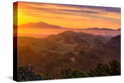 Ethereal Golden Sunrise Mount Diablo East Bay Oakland Bay Area-Vincent James-Stretched Canvas Print