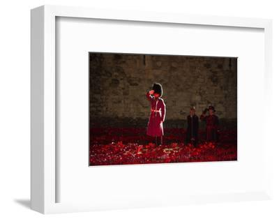 A soldier salutes in the midst of poppies at the Tower of London-Associated Newspapers-Framed Photo