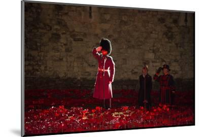A soldier salutes in the midst of poppies at the Tower of London-Associated Newspapers-Mounted Photo