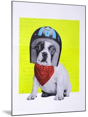 Easy Rider--Mounted Giclee Print
