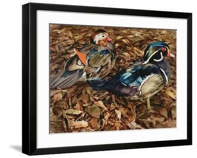 Carolonia Ducks, 1991-Sandra Lawrence-Framed Giclee Print