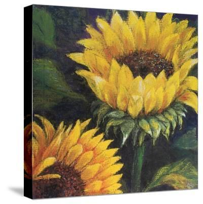 Sunflowers, 2016--Stretched Canvas Print