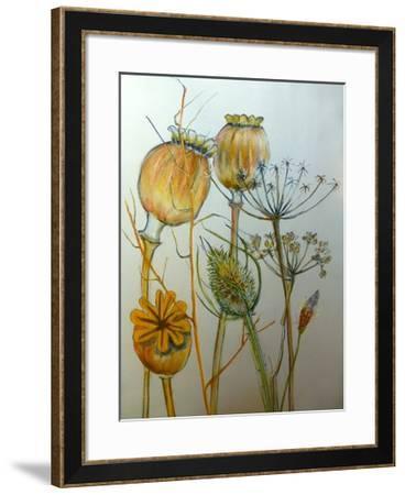 Dried seedheads-Sarah Thompson-Engels-Framed Giclee Print