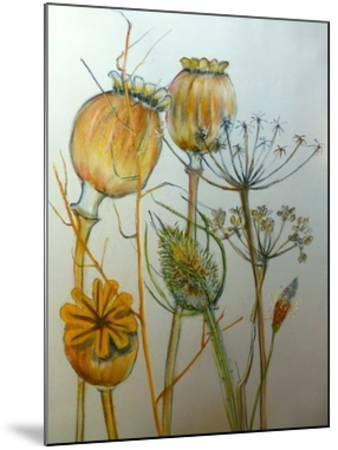 Dried seedheads-Sarah Thompson-Engels-Mounted Giclee Print
