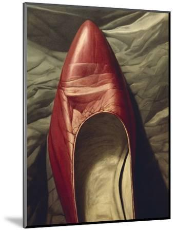Shoe-like-Robert Burkall Marsh-Mounted Giclee Print