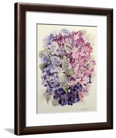 African Violets-Joan Thewsey-Framed Giclee Print