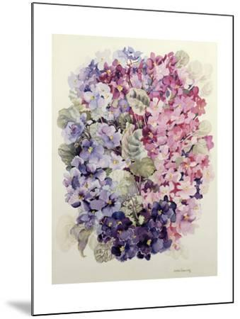 African Violets-Joan Thewsey-Mounted Giclee Print