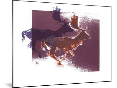 Fallow Bucks, 2015-Mark Adlington-Mounted Giclee Print