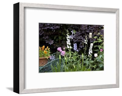Flowers in a garden-Richard Bryant-Framed Photo