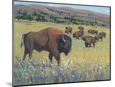 Animals of the West I-Tim O'Toole-Mounted Art Print