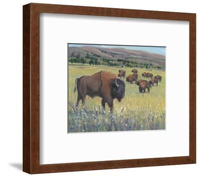 Animals of the West I-Tim O'Toole-Framed Art Print