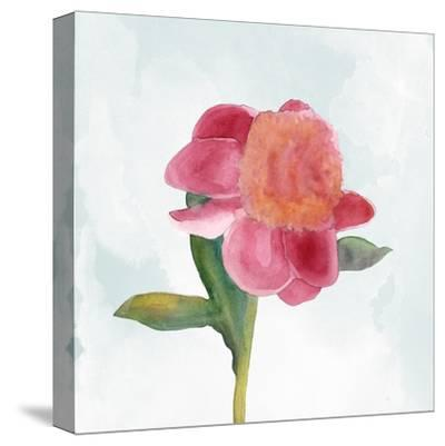 Joyful Peony III-Alicia Ludwig-Stretched Canvas Print