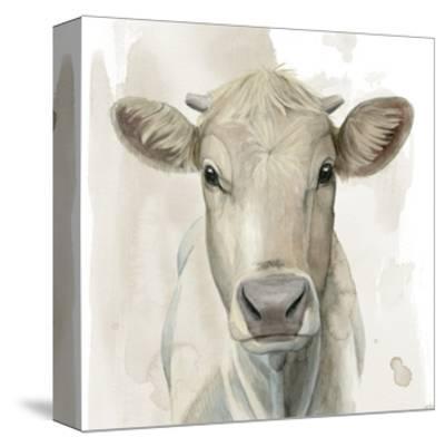 Prairie Bovine I-Grace Popp-Stretched Canvas Print