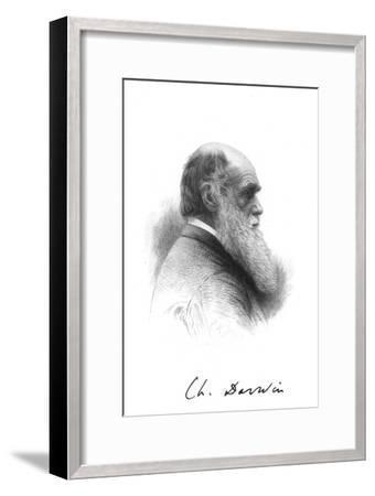 Charles Darwin, English naturalist, c1880. Artist: Unknown-Unknown-Framed Giclee Print