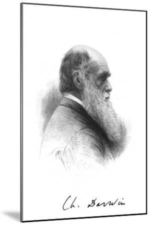 Charles Darwin, English naturalist, c1880. Artist: Unknown-Unknown-Mounted Giclee Print