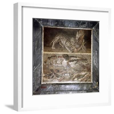 Roman mosaic of a cat with ducks, Pompeii, Italy. Artist: Unknown-Unknown-Framed Giclee Print