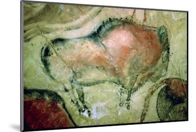 Paleolithic cave-painting of Bison from Spain. Artist: Unknown-Unknown-Mounted Photographic Print
