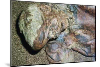 Lindow Man, found in a peat moss bog in Ireland, c2nd century BC. Artist: Unknown-Unknown-Mounted Giclee Print