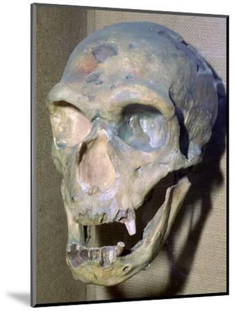 Reconstructed Neanderthal Man's skull, 49,000 BC. Artist: Unknown-Unknown-Mounted Photographic Print