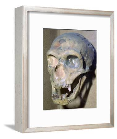 Reconstructed Neanderthal Man's skull, 49,000 BC. Artist: Unknown-Unknown-Framed Photographic Print