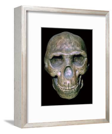 Skull of 'Peking' man (reconstruction). Artist: Unknown-Unknown-Framed Photographic Print