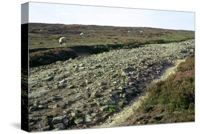 Roman road on Wheeldale Moor. Artist: Unknown-Unknown-Stretched Canvas Print