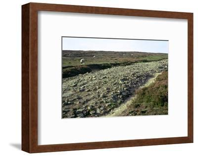 Roman road on Wheeldale Moor. Artist: Unknown-Unknown-Framed Photographic Print