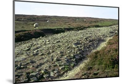 Roman road on Wheeldale Moor. Artist: Unknown-Unknown-Mounted Photographic Print