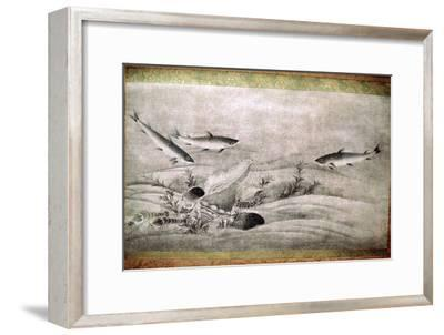 Japanese painting of fish. Artist: Unknown-Unknown-Framed Giclee Print