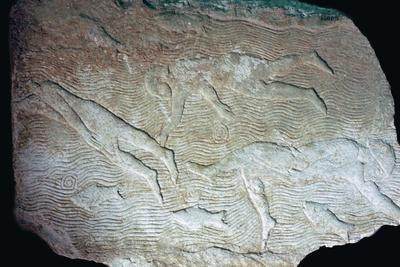 Assyrian relief of swimmers. Artist: Unknown-Unknown-Framed Giclee Print