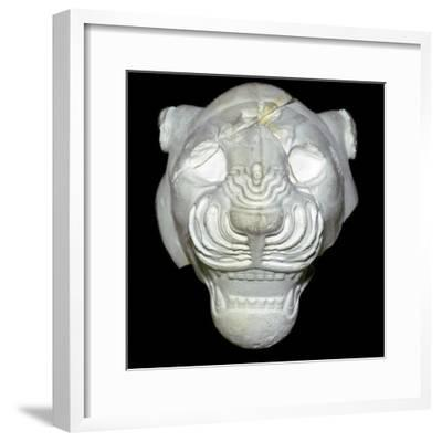 Stone lion's head, Neo-Assyrian, about 680-670 BC, from Sippar, southern Iraq. Artist: Unknown-Unknown-Framed Giclee Print
