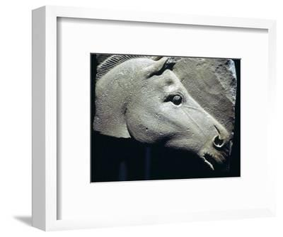 Egyptian relief of a horse's head. Artist: Unknown-Unknown-Framed Giclee Print
