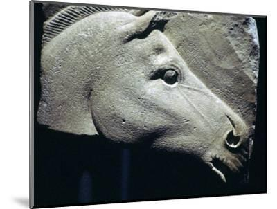 Egyptian relief of a horse's head. Artist: Unknown-Unknown-Mounted Giclee Print