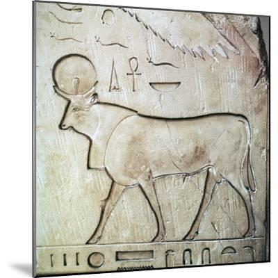 Egyptian relief of the bull-god Apis. Artist: Unknown-Unknown-Mounted Giclee Print