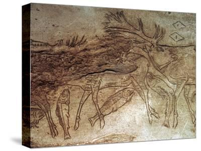 Paleolithic engraved bone with reindeer. Artist: Unknown-Unknown-Stretched Canvas Print