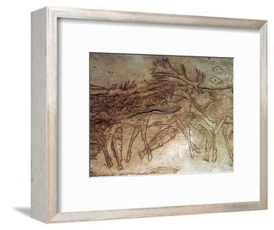 Paleolithic engraved bone with reindeer. Artist: Unknown-Unknown-Framed Giclee Print