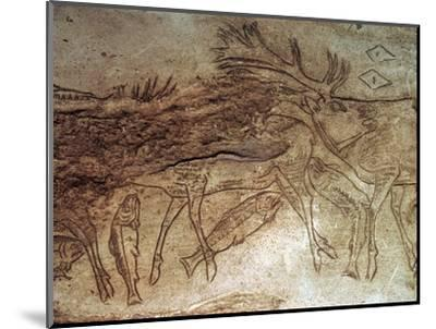 Paleolithic engraved bone with reindeer. Artist: Unknown-Unknown-Mounted Giclee Print
