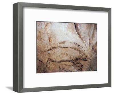 Paleolithic cave-painting of a bison and ibex. Artist: Unknown-Unknown-Framed Giclee Print