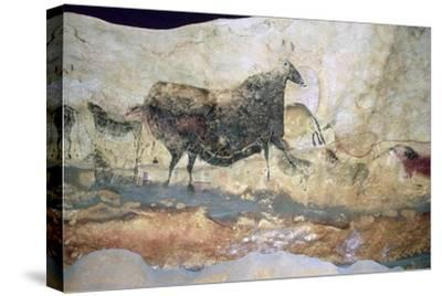La Scaux cave painting of Aurochs. Artist: Unknown-Unknown-Stretched Canvas Print